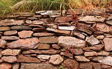 stonewalling 4